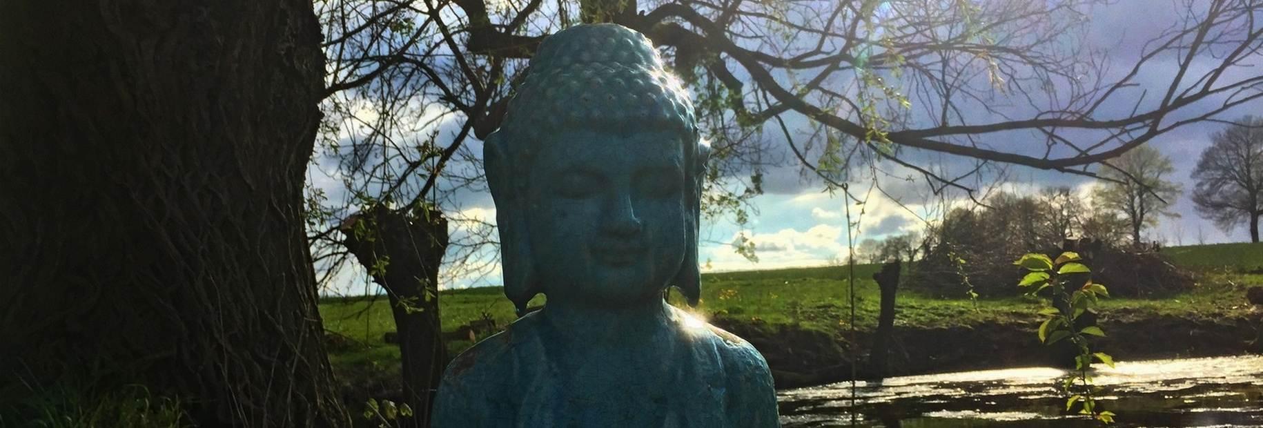 Yoga Einsteiger Kurs
